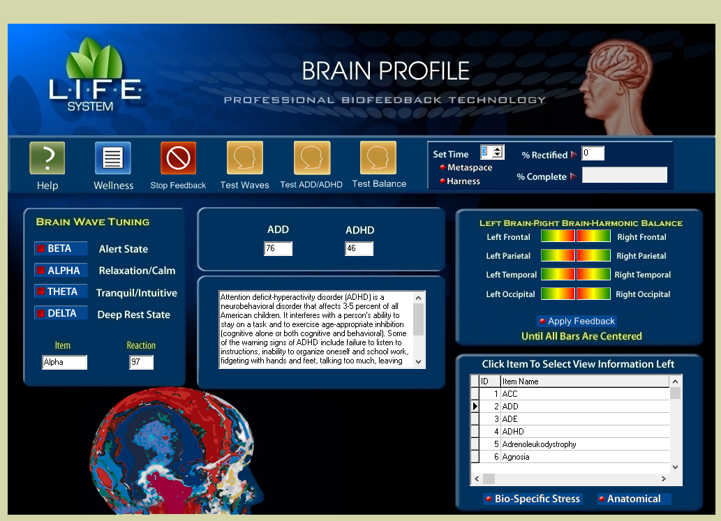 Brain Profile.png