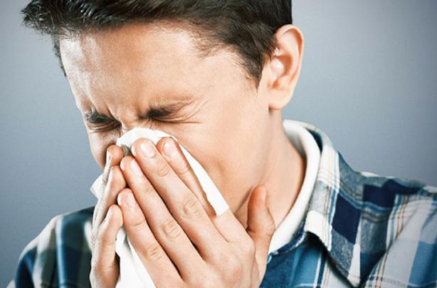 Allergy Scan