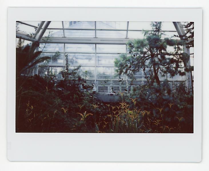 02.18.19 Prospect Park 007.jpg