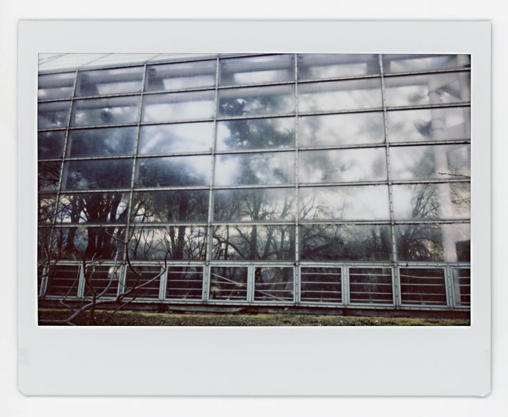02.18.19 Prospect Park 006.jpg