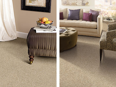 g_carpet_multi_2.jpg