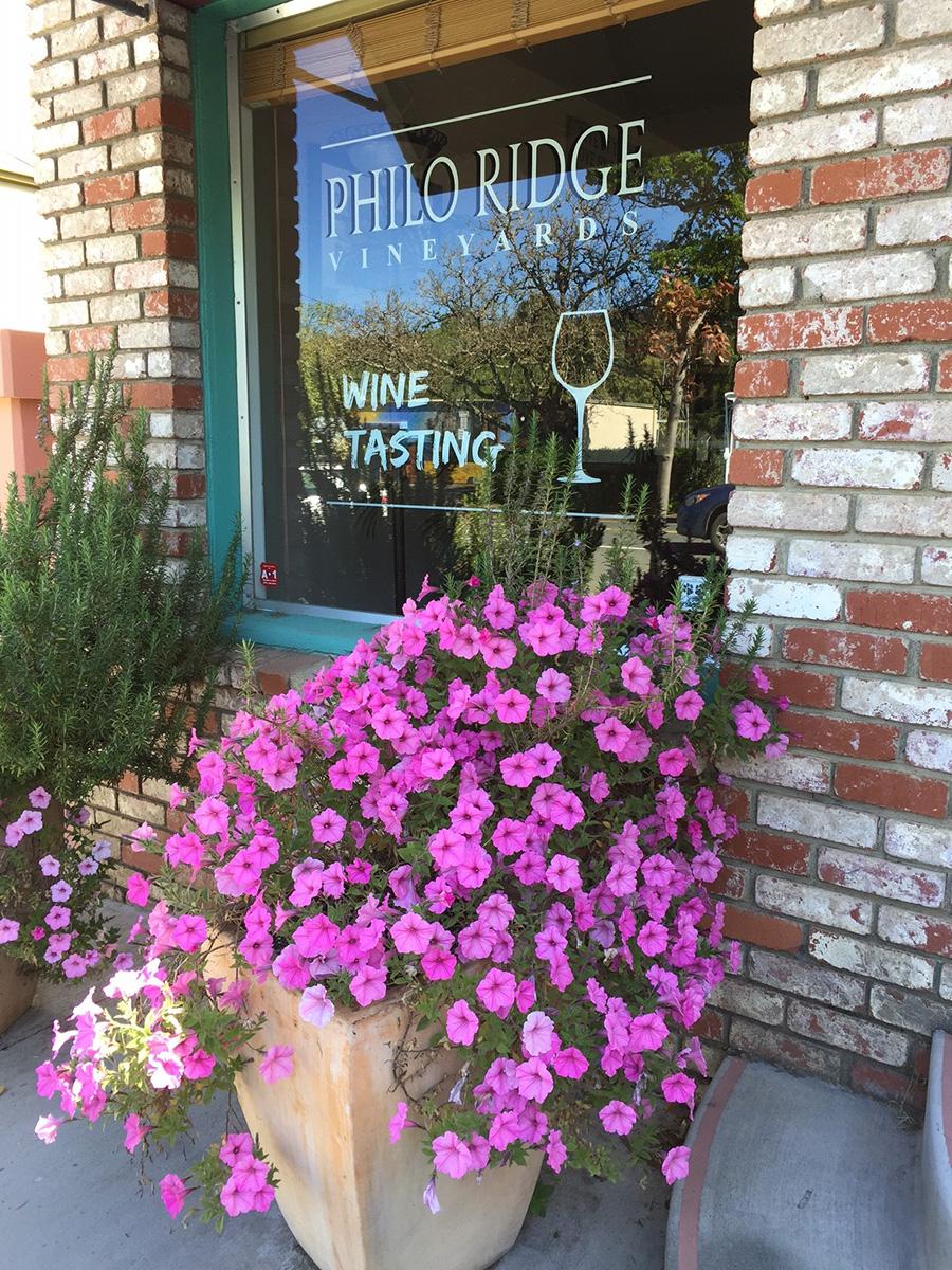 Philo-Ridge_Tasting-Room.jpg