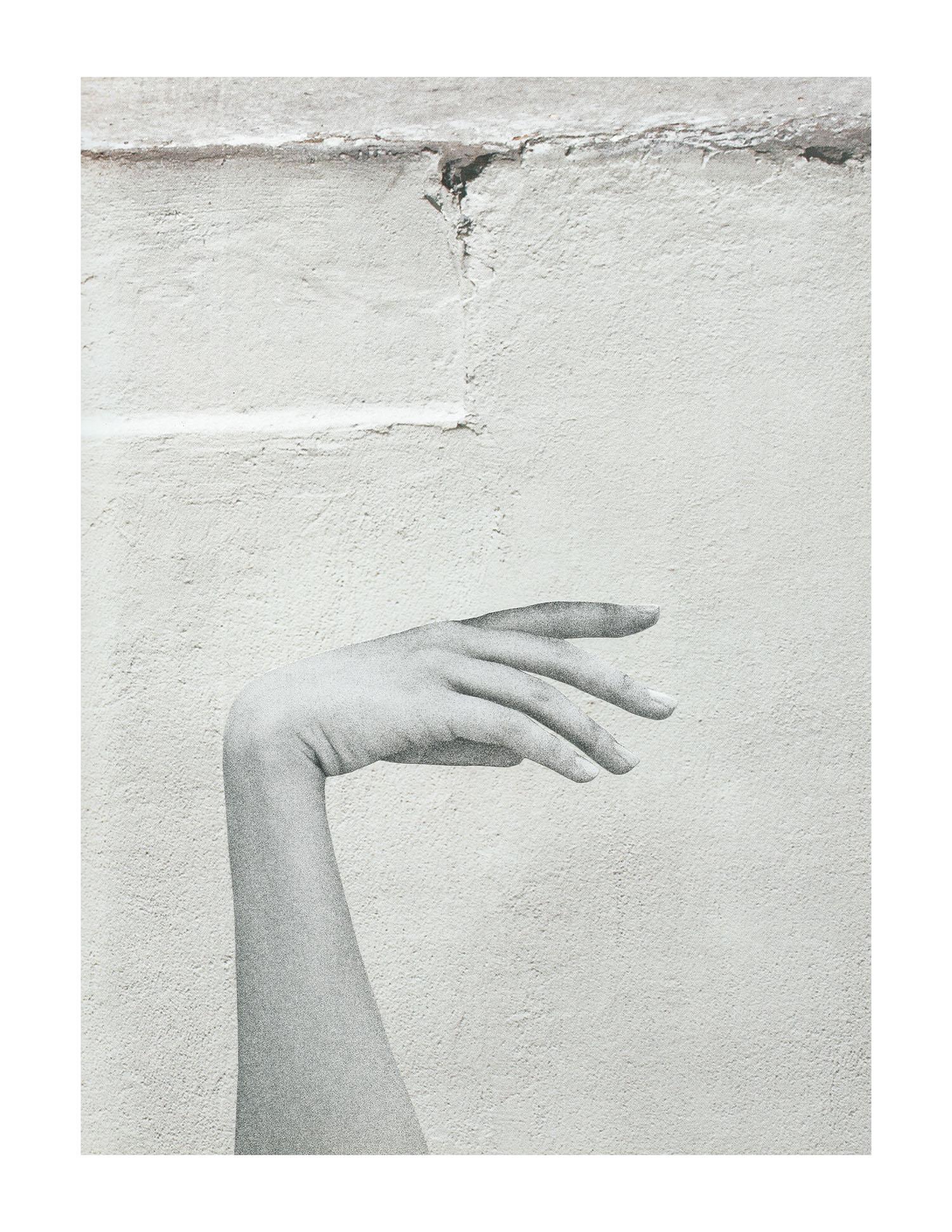 White_LR.jpg