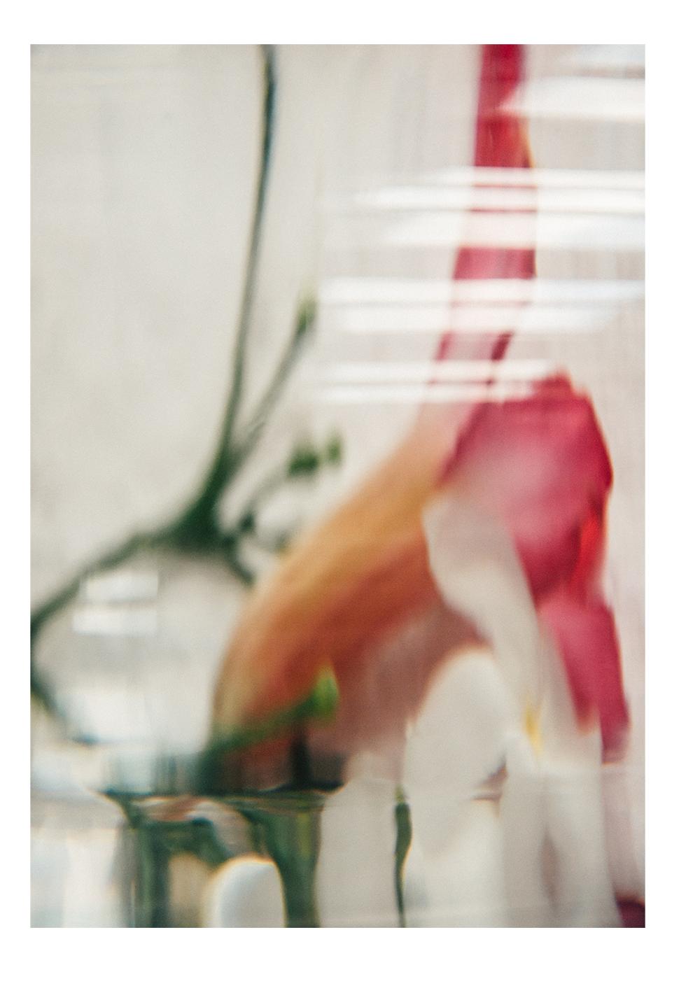 Conceptual floral derangements personal photo series