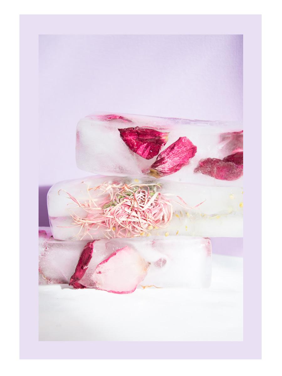 Frozen Florals
