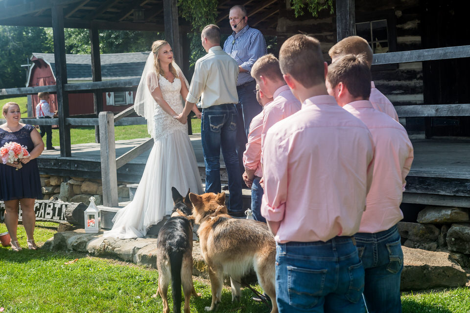 741Avon-Wedding-Country-Dogs.JPG
