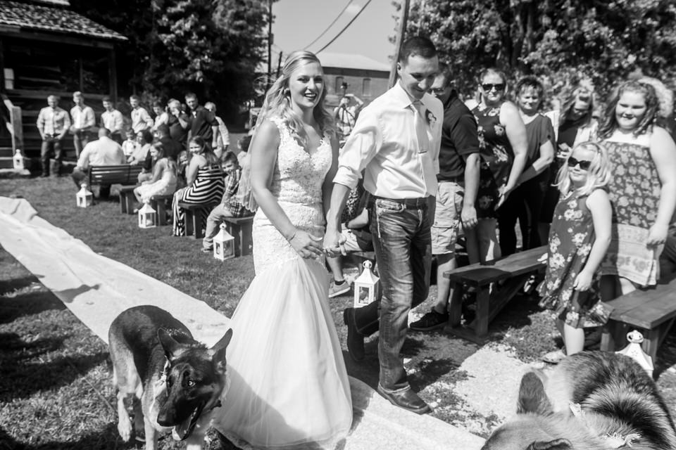790Avon-Wedding-Country-Dogs.JPG