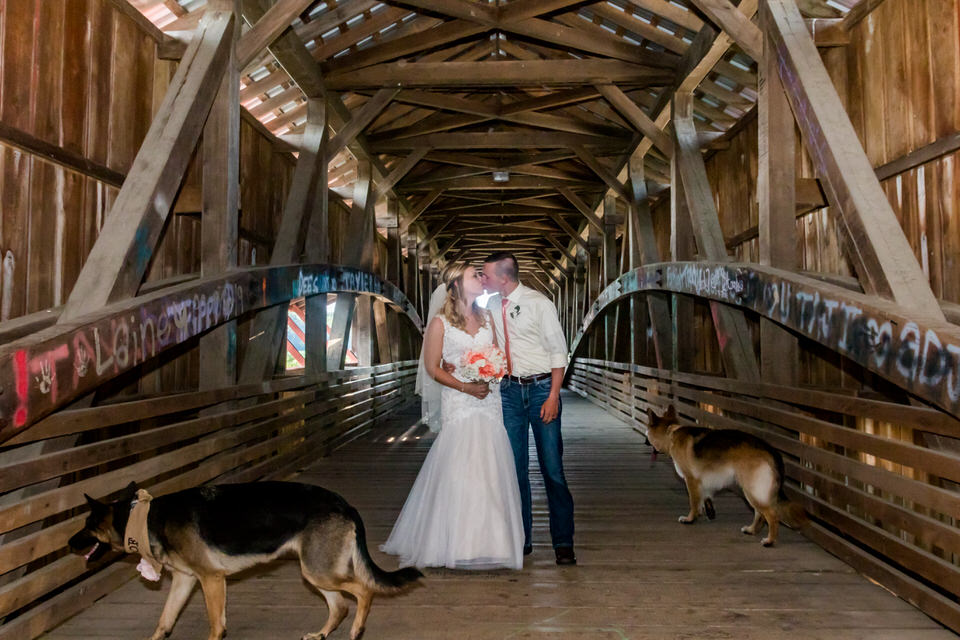 901Avon-Wedding-Country-Dogs.JPG