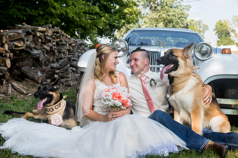 A bride and groom pose for a photo with their dogs at Bridgeton Barn