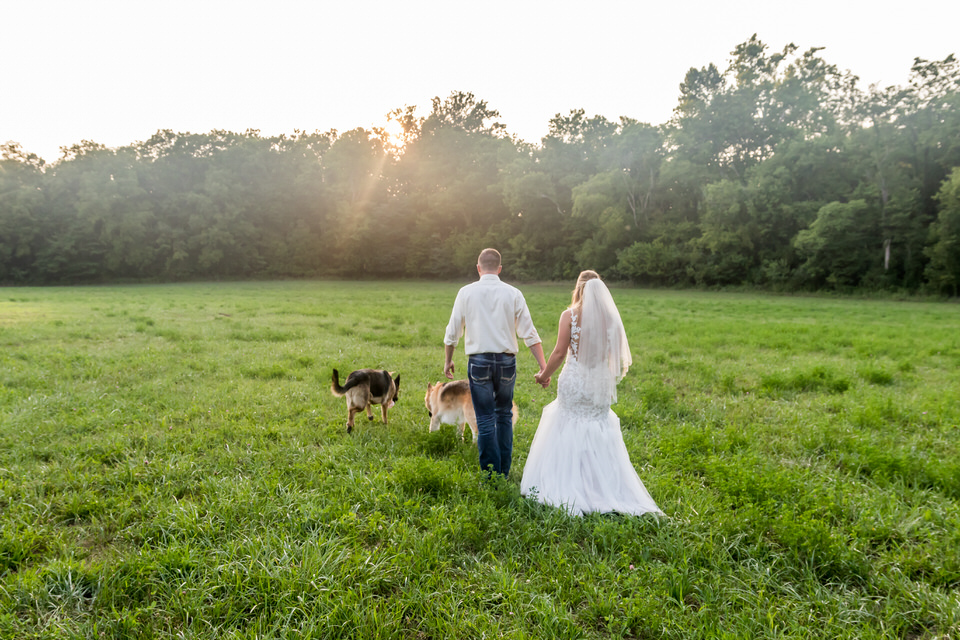 1451Avon-Wedding-Country-Dogs.JPG
