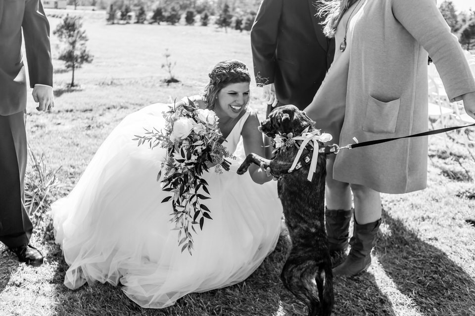 Terre Haute Wedding Photos 10850.JPG