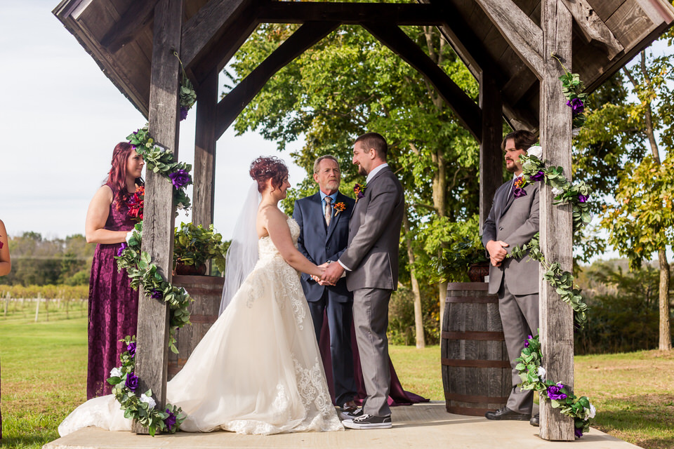 Sleepy Creek Vineyard Wedding Photos 6925.JPG