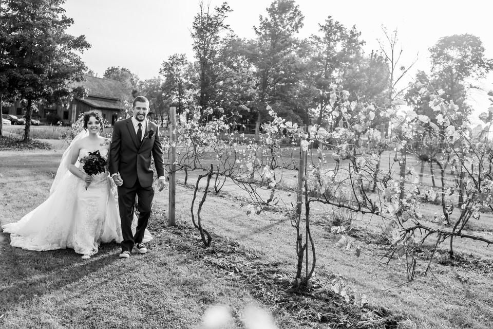 Sleepy Creek Vineyard Wedding Photos 7106.JPG