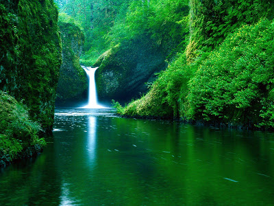 Punch Bowl Falls, Eagle Creek Wilderness Area, California.jpg