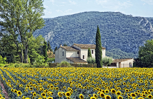 best-places-france-provence-countryside.jpg