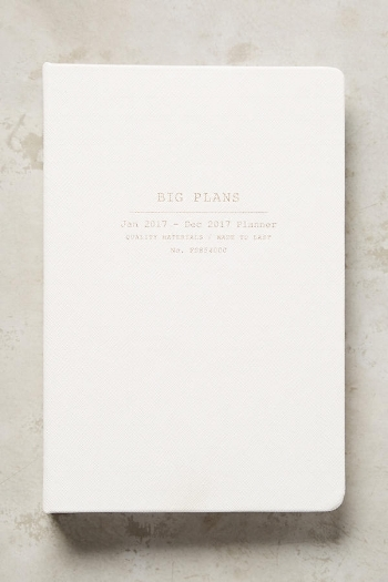 Love the simplicity of this one  Big Plans Planner / Anthropologie / $28