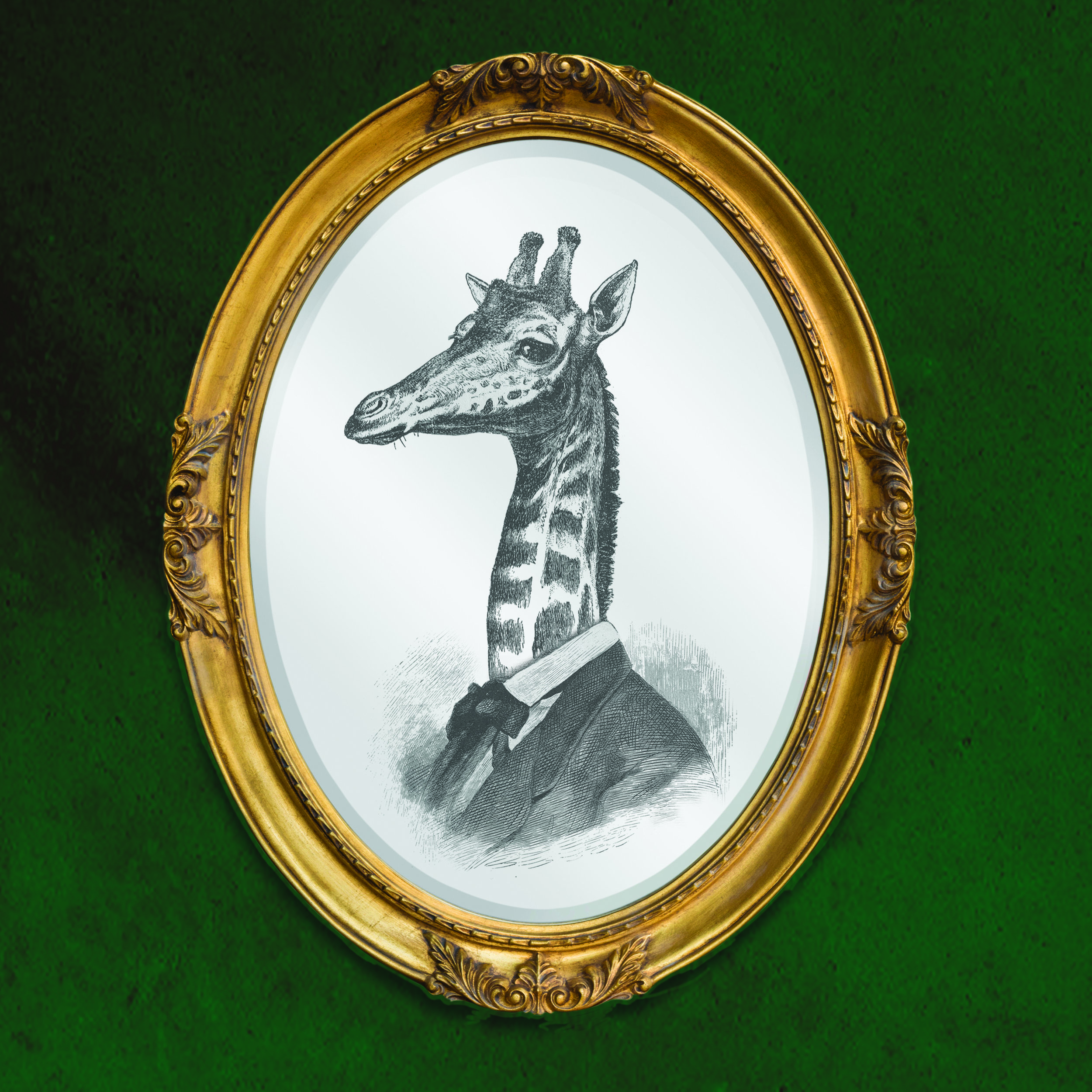The Giraffe- Signed and numbered edition of 100