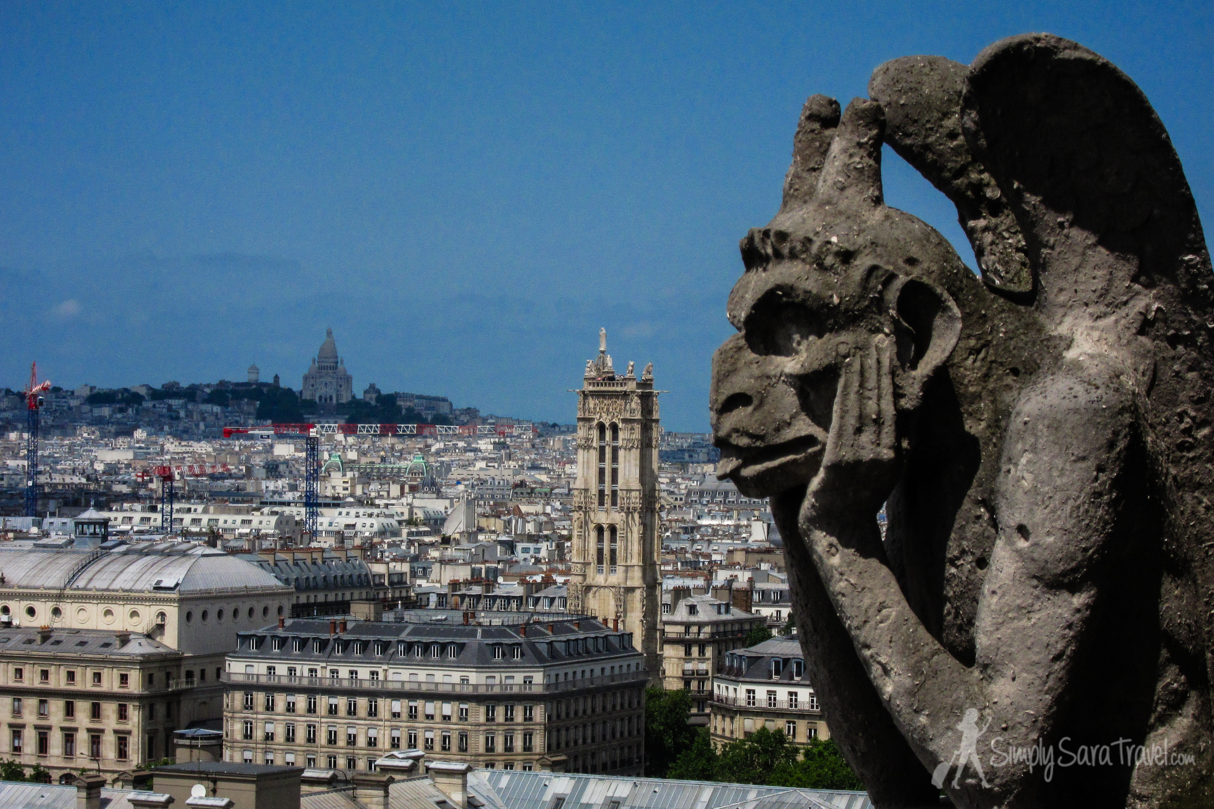 Another of my favorite views, from the tower of  Notre Dame