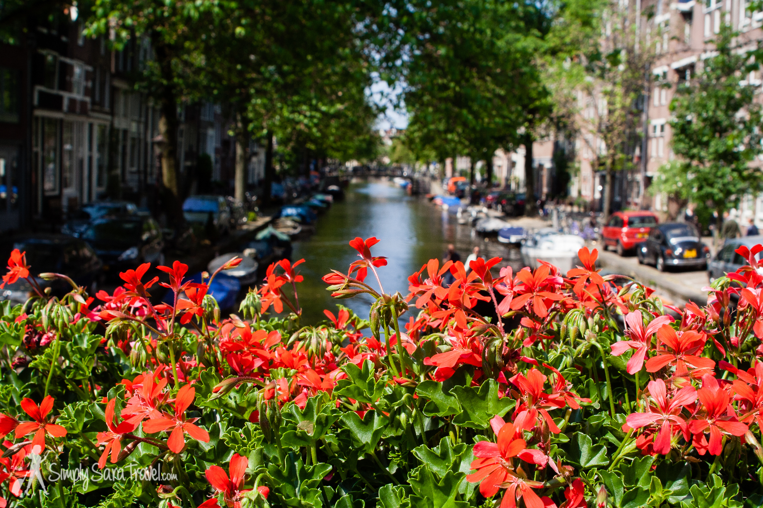 The canals of Amsterdam (June 2013)