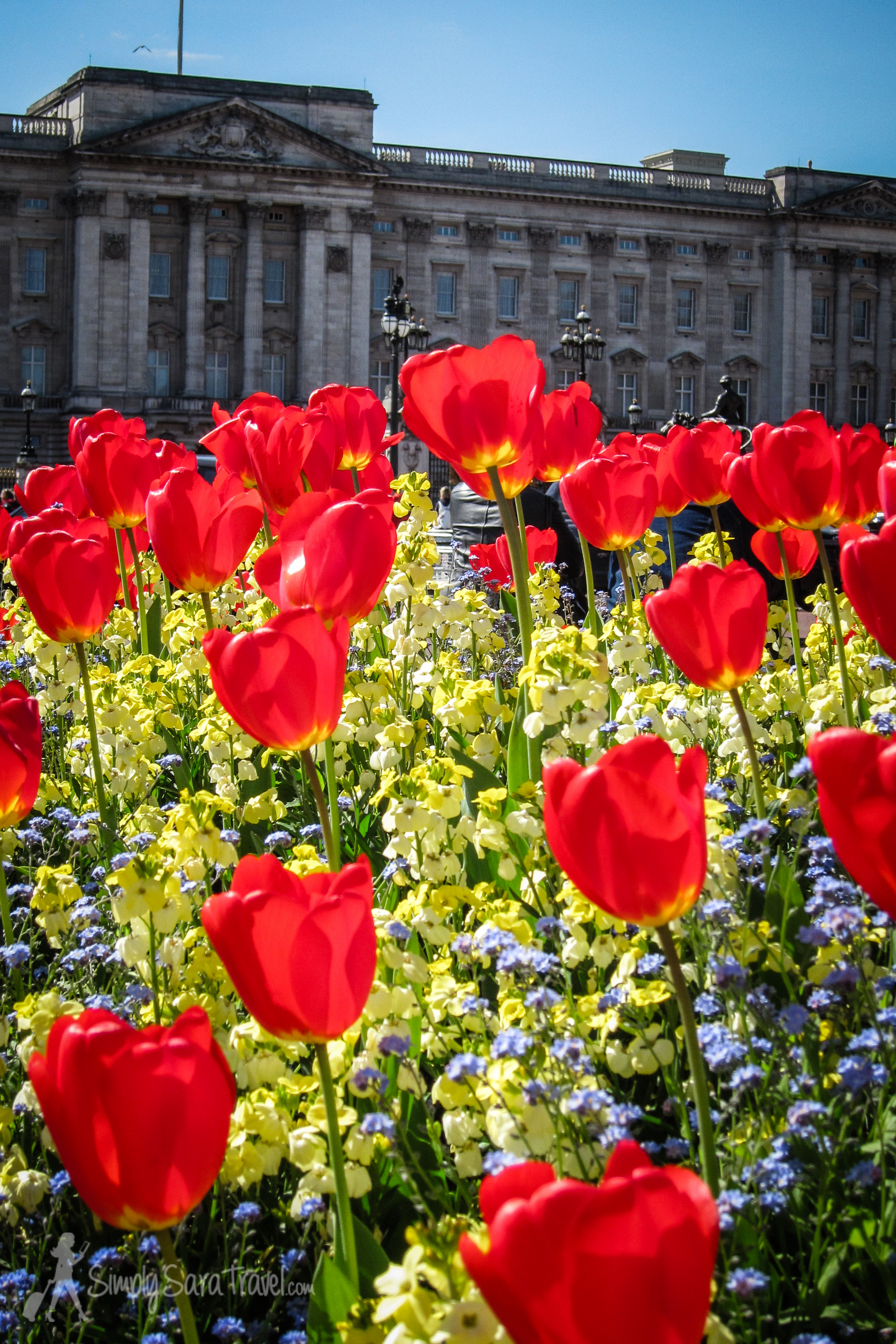 Buckingham Palace with a dose of bright flowers. Stunning.
