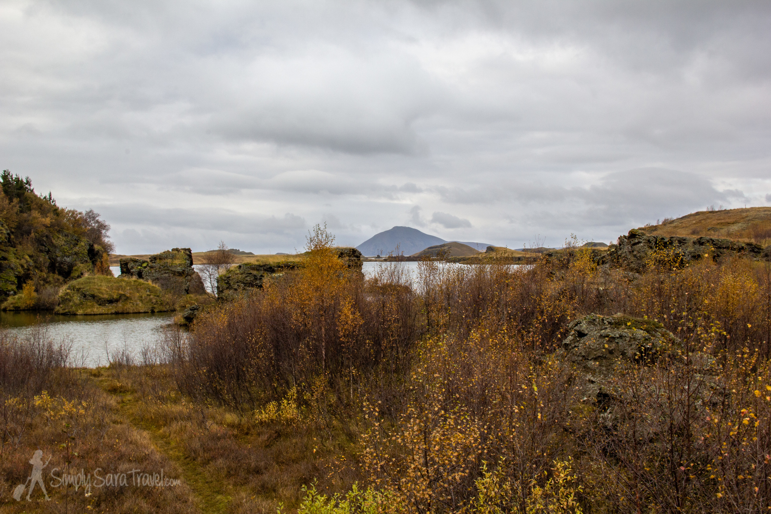 Autumn colors by Lake Mývatn (northern Iceland)
