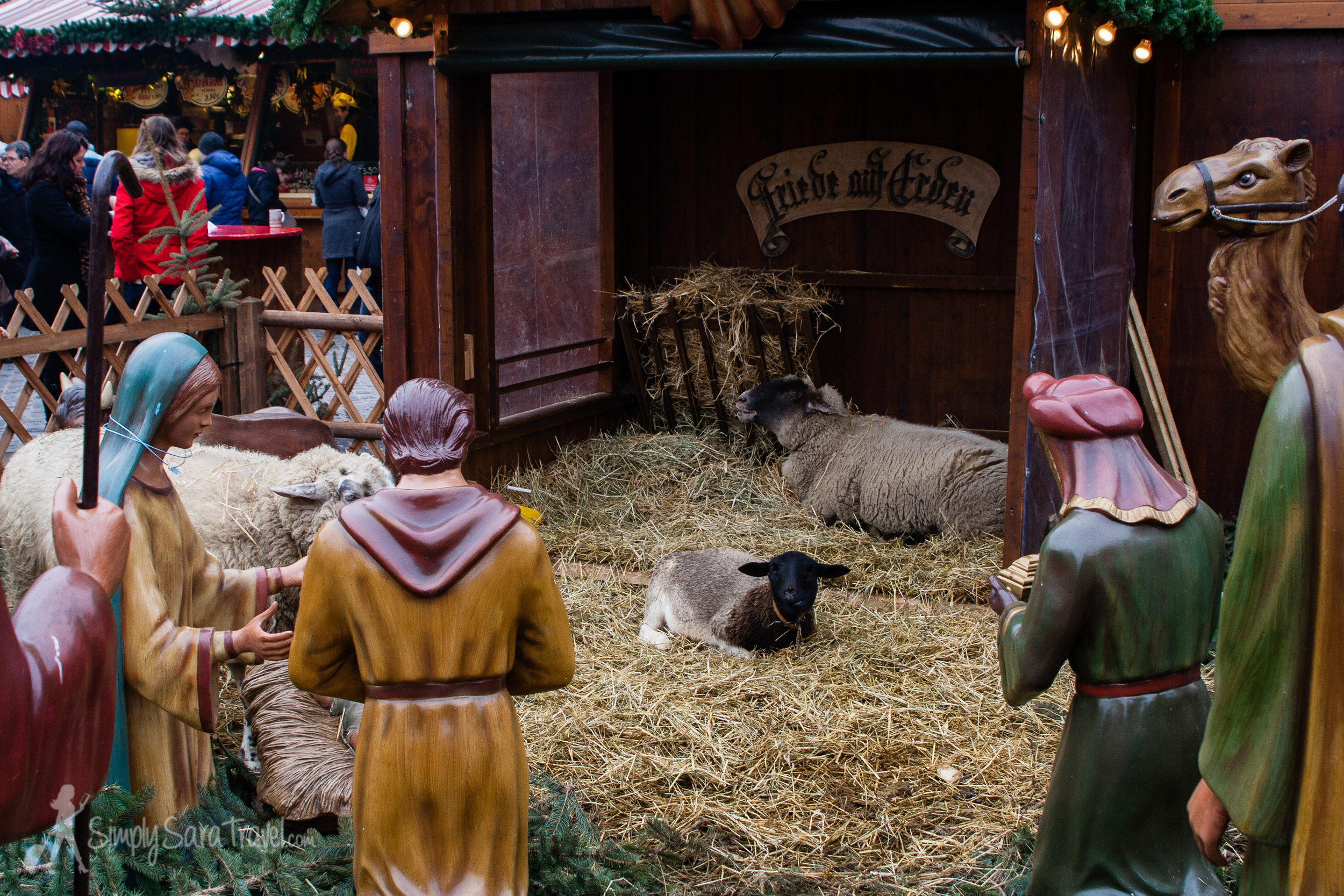 The manger in Leipzig, Germany with live animals