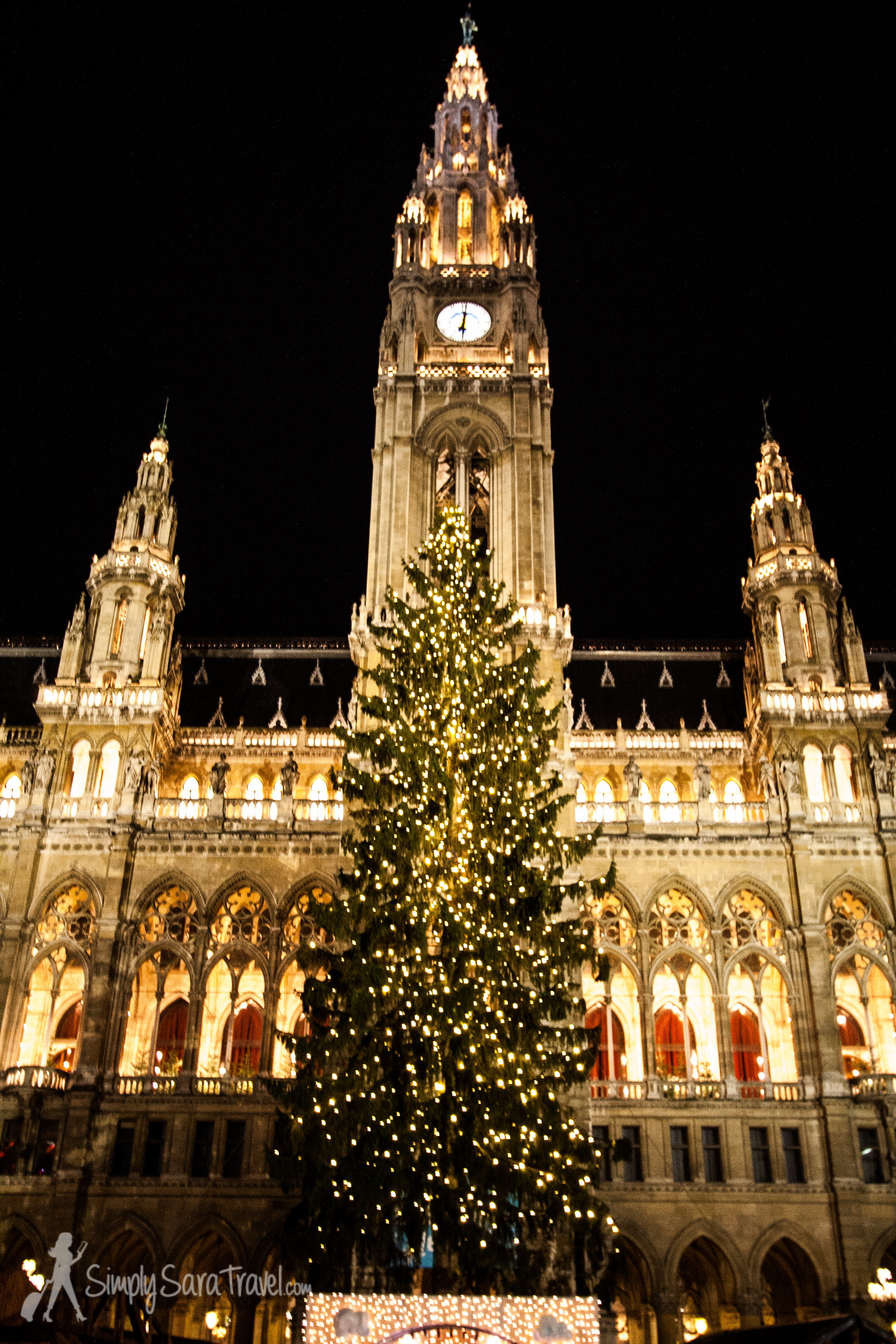 Vienna's Rathaus really was magical to experience at night.