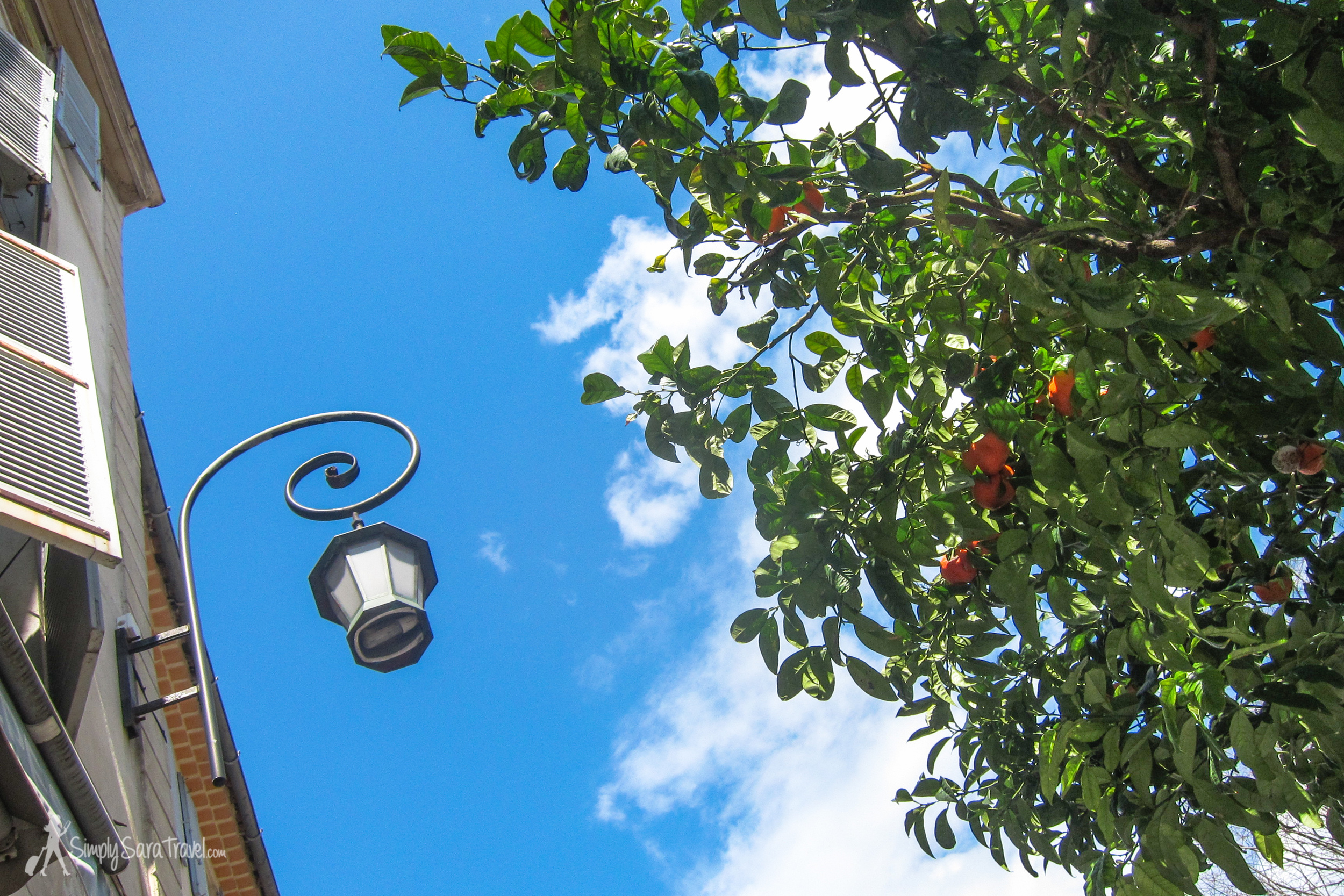 My attempt to capture the moment of sitting at that café, underneath brilliant blue skies and a vibrant orange tree.