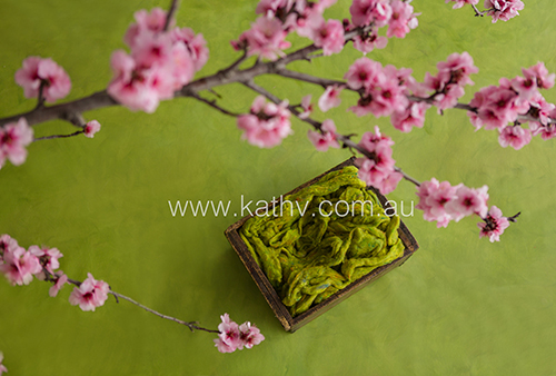 Box Blossoms - Green.jpg