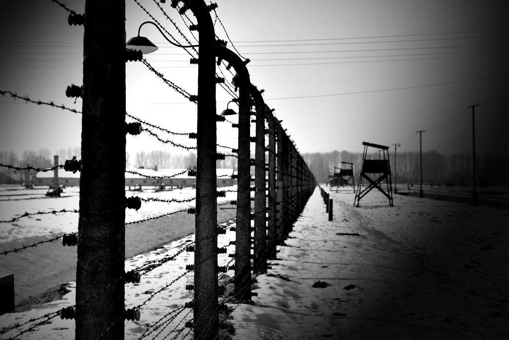 Back after a parents trip to Auschwitz-Birkenau. It does make you think about many things…. Europe amongst them.