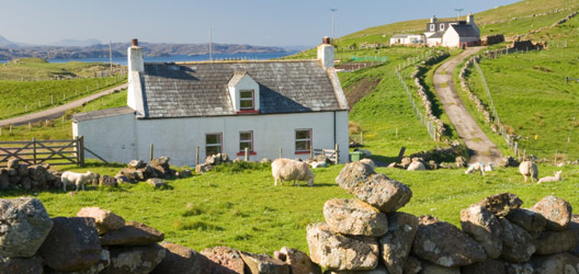 The croft in the Highlands scenario just became a viable option
