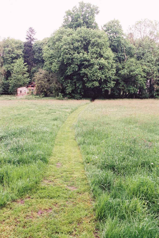 Weg Park Nustrow
