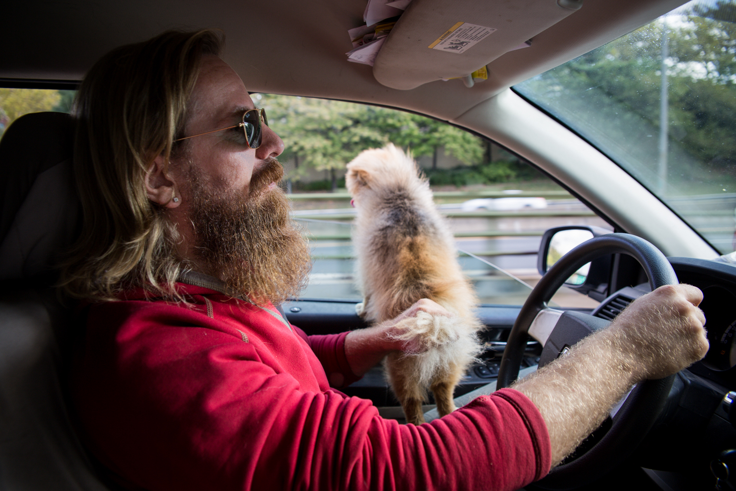 I think it's worth pointing out here that he's holding the dog's tail to make sure it doesn't jump out the window. The dog never made an effort to jump out the window.  He's doing it just in case.  That's called professionalism.