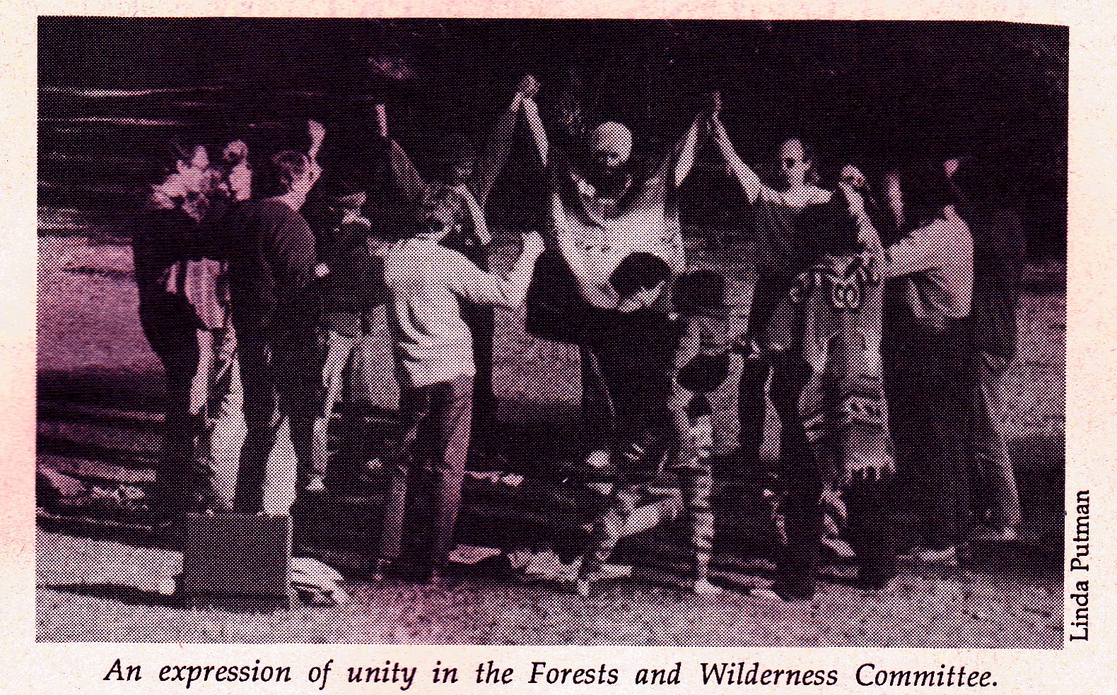 Forests and Wilderness Committee