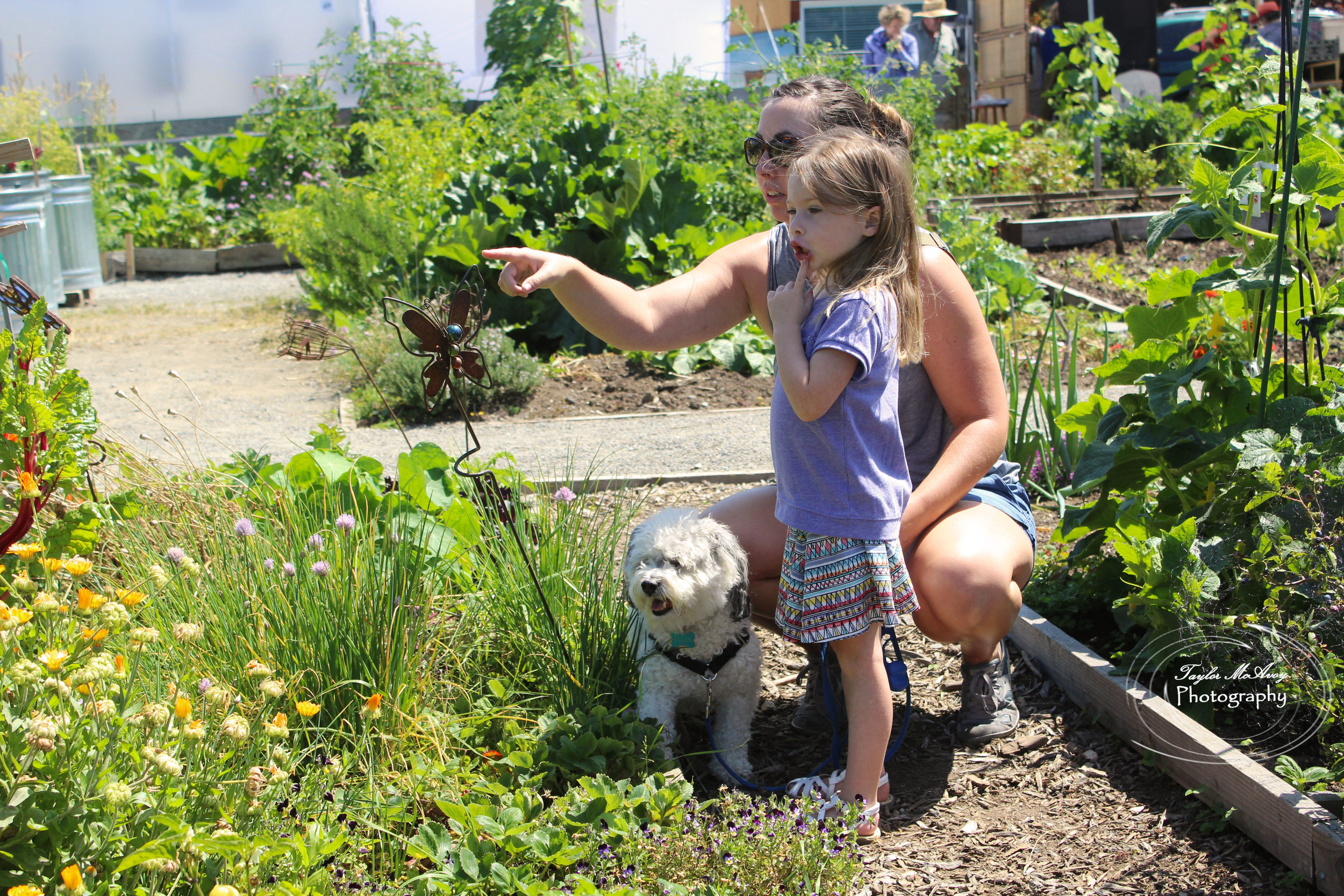 Faith Low, daughter, and their dog Darcy discover new flowers and plants.