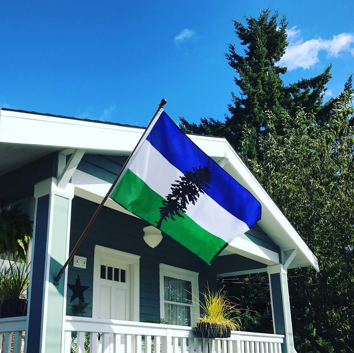 CascadiaNow! flag 5 Photo by Seattle FlagMakers.jpg (1).jpg