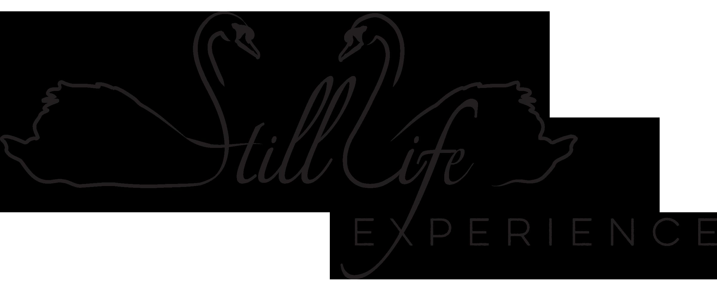 Still_Life_Logo_Experience (1).png