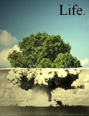 tree-bomb.jpg