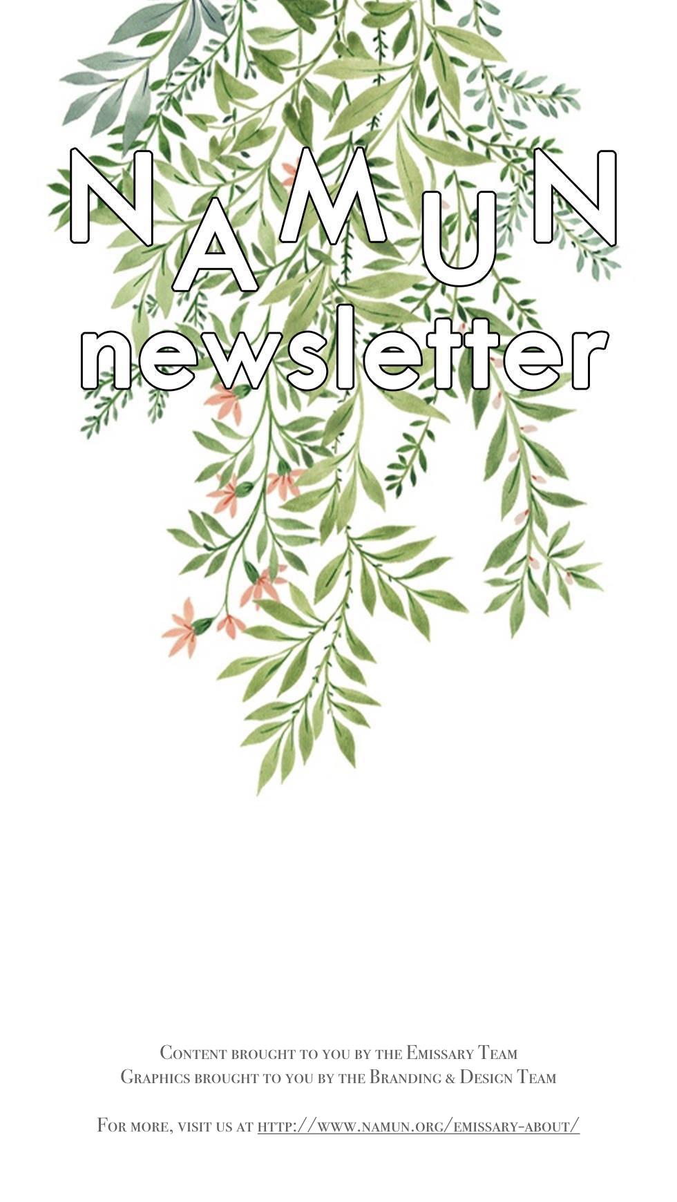 NAMUN Newsletter #1 .001.jpeg