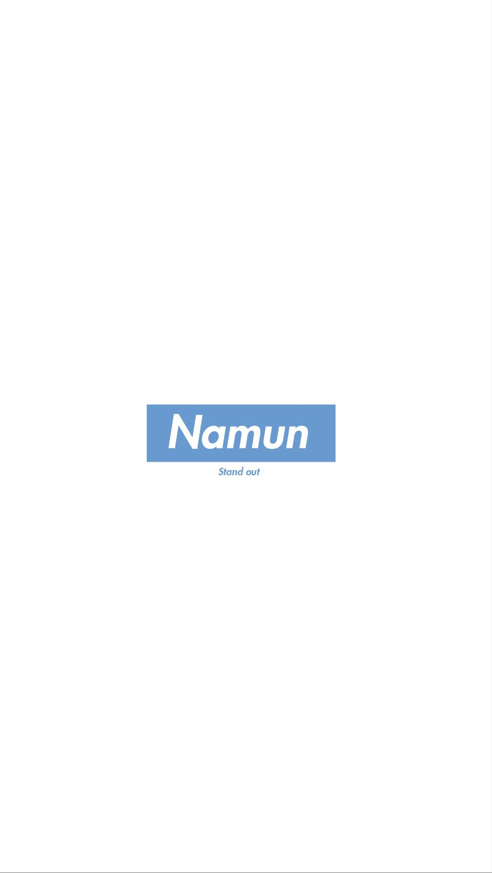 NAMUN Newsletter #2 (jpeg).009.jpeg