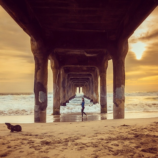 My__LAstory_begins_with_a_Sea_Lion__a_Surfer__a_Sunset_and_the_Magical_Manhattan_Beach_Pier.__Over_the_next_month_I_ll_be_partnering_with__discoverLA_to_show_you_some_of_the_hidden_gems_around_Los_Angeles._But_that_s_enough_about_you_Pete_what_do_I_g.jpg