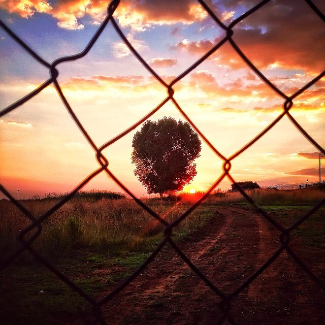 This_goes_out_to_All_the_igers_who_meet_a_fence_when_they_wanna_take_the_perfect_shot__by_unclescrooch.jpg