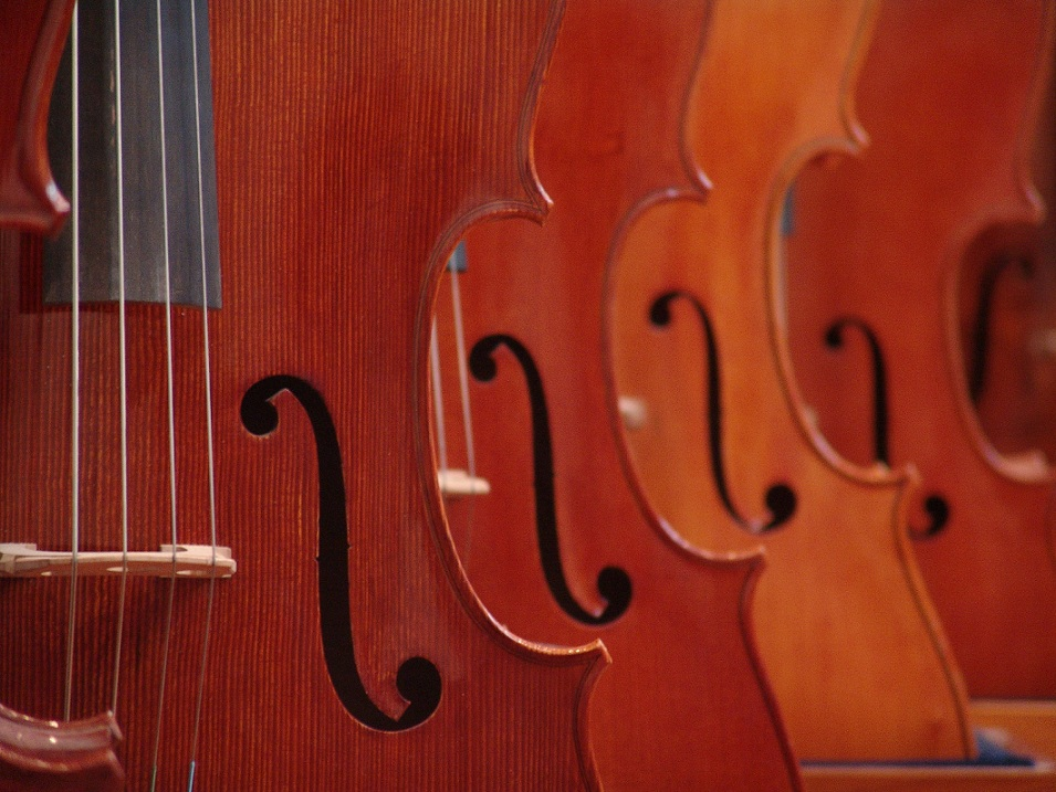 Good musical instruments are essential for success in music