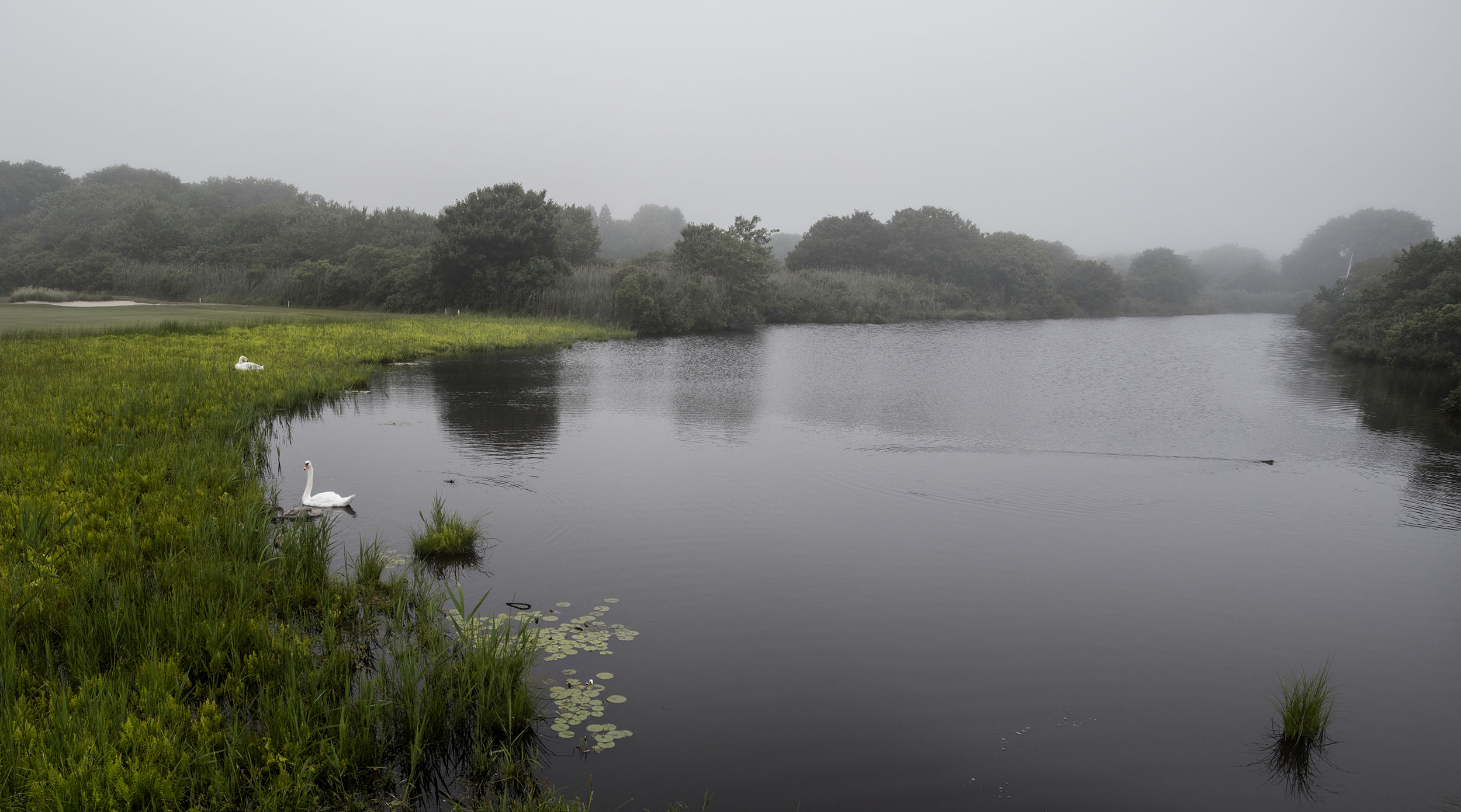 Summer_Hamptons_Golf Course 1_web.jpg