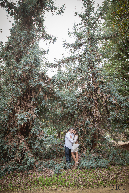 Yvette & Rey Engagement-MCP-6.jpg