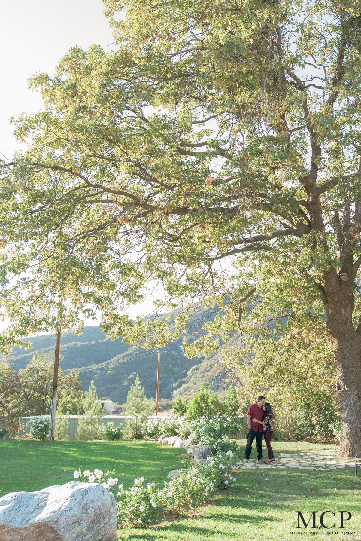 J+A - Engagement Oct 26-MCP-3.jpg