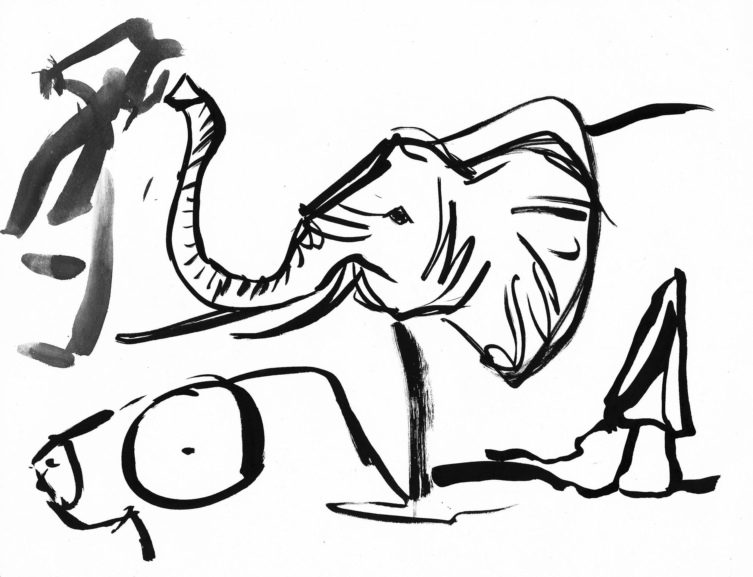 Elephant_Aardvard_Mushroom.jpg