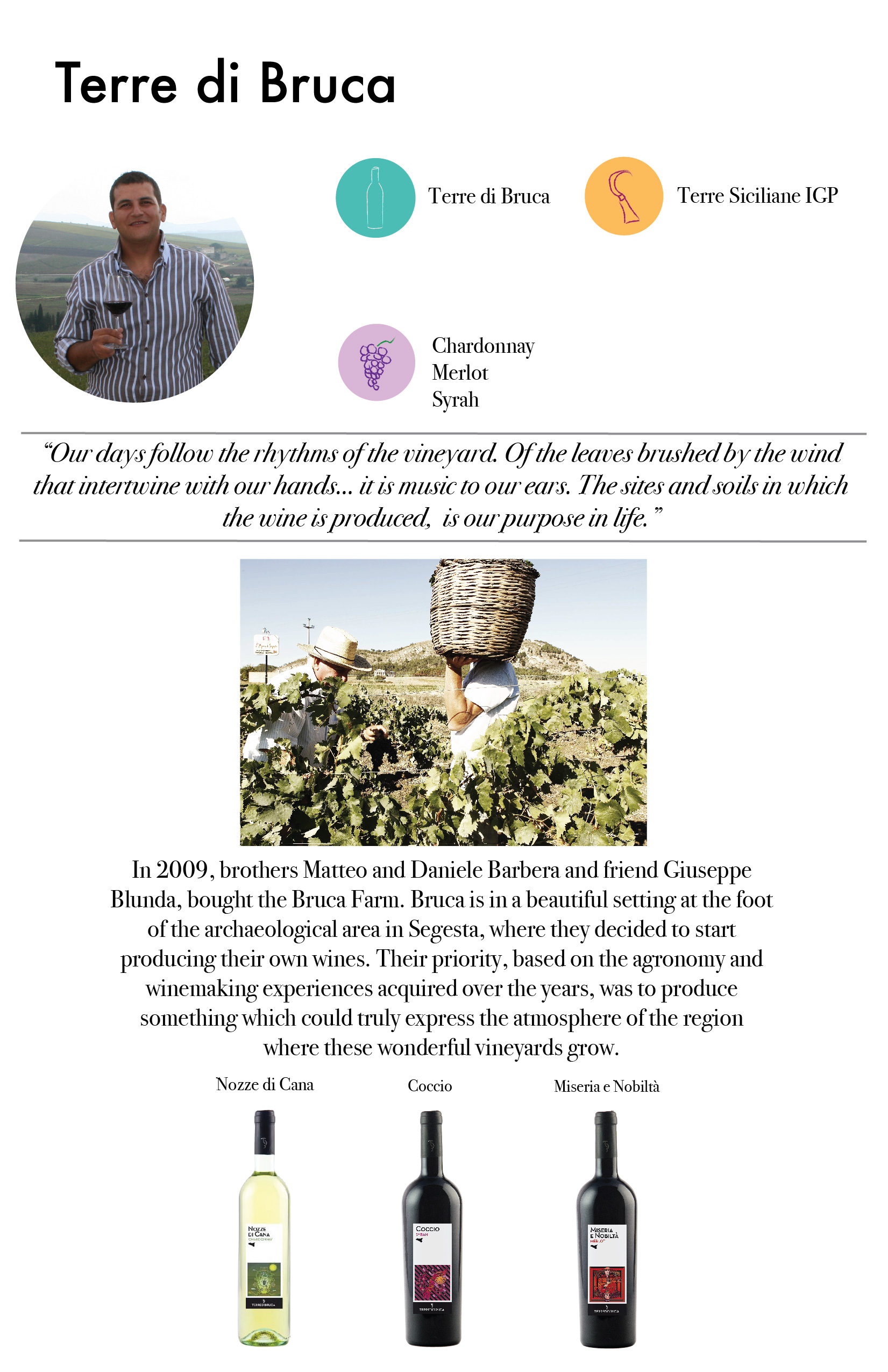 MTG Wine Booklet Images_Terre Di Bruca.jpg