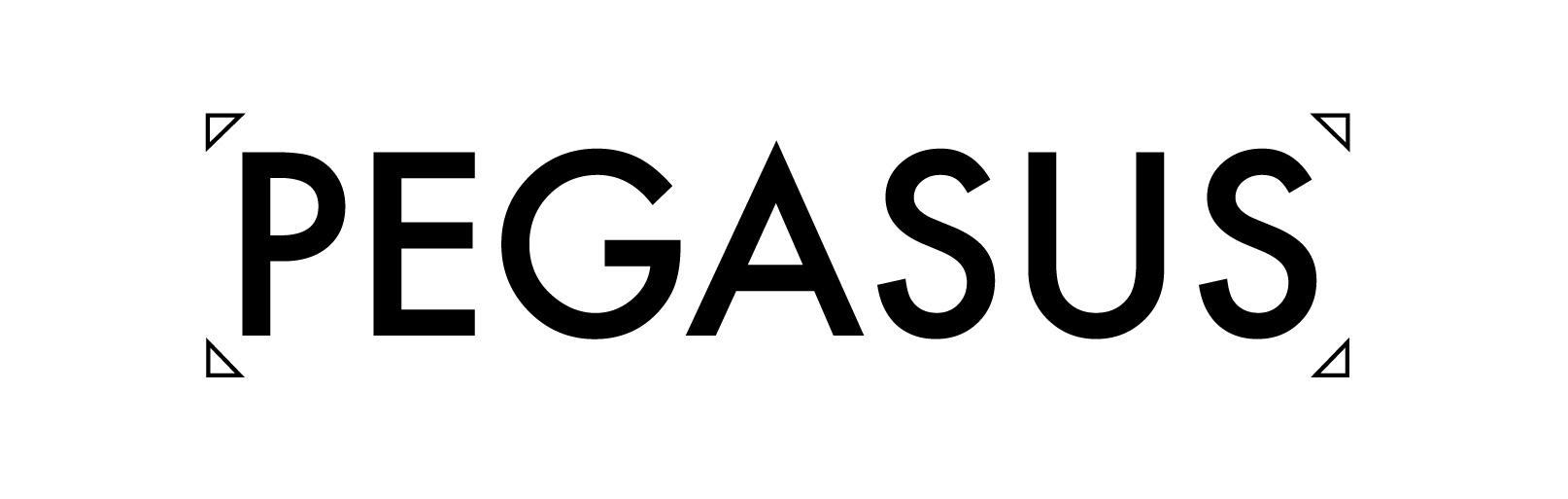 pegasus logo portfolio -12.jpg