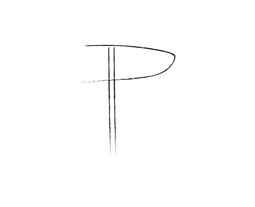 pegasus logo portfolio -15.jpg